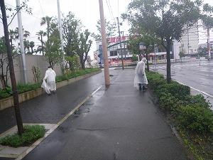 1ヶ月前は毎日が雨でしたね・・・